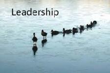 supervision ducks